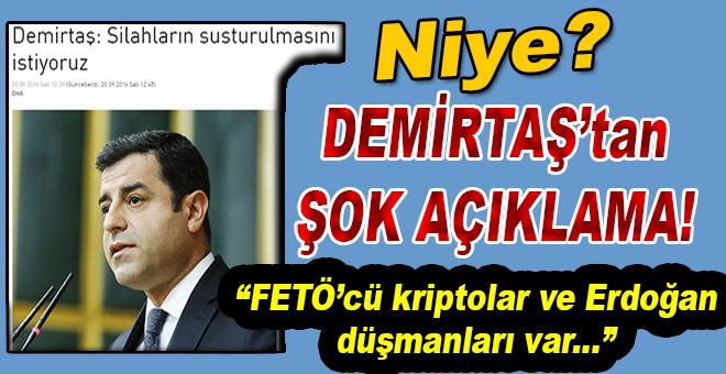 """Demirtaş'tan şok açıklama; """"Darbe yapmak isteyen kripto FETÖ'cüler ve Erdoğan düşmanları var!"""""""