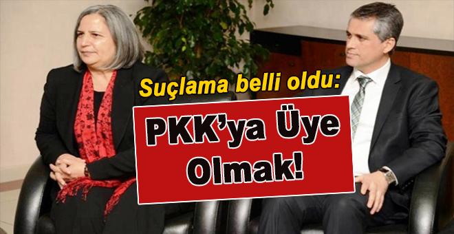Gültan Kışanak gözaltında; Suç; PKK'ya üye olmak!