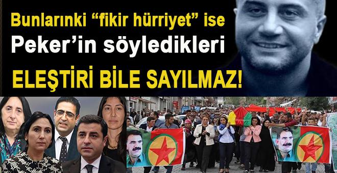 """Bunlar """"fikir hürriyeti"""" ise Sedat Peker'in söyledikleri """"eleştiri"""" bile sayılmaz!"""