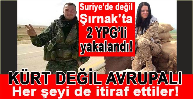 Şırnak'ta yakalanan Avrupalı YPG'lilerin itirafları