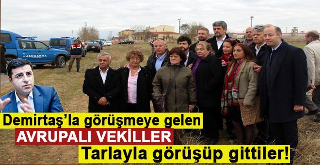 """Demirtaş'la görüşemeyen Avrupalı vekiller """"tarla"""" ile görüştü!"""
