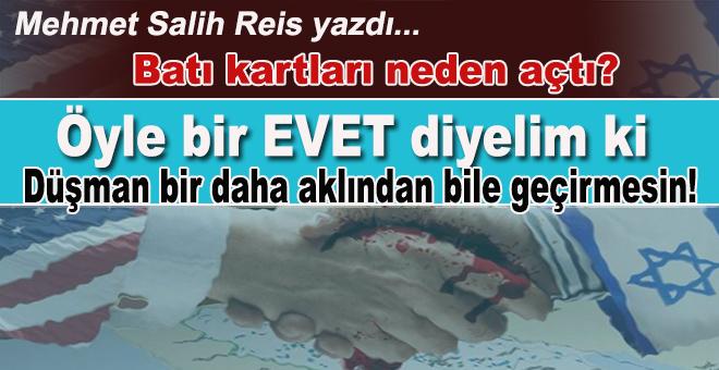 Mehmet Salih Reis; Batı kartları neden açtı?