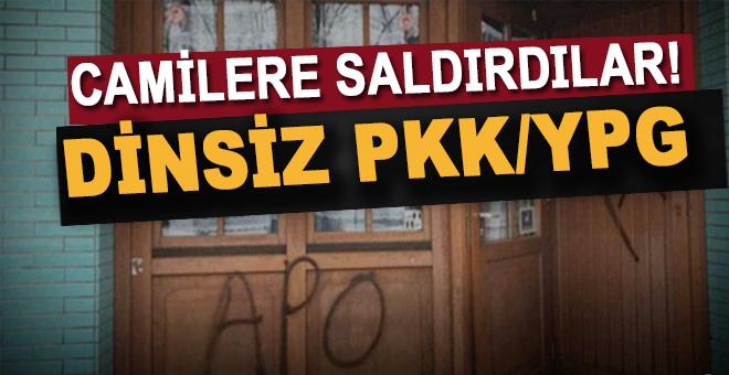Afrin'de kaç, Almanya'da camilere saldır!