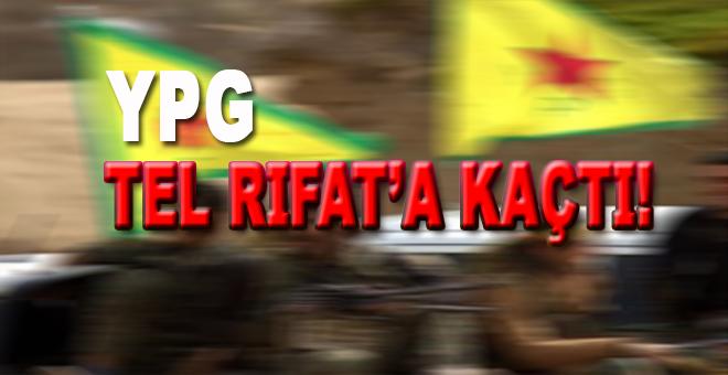 Afrin'den kaçan ve Menbiç'e ulaşamayan teröristlerTel Rıfat'ta saklanıyor!