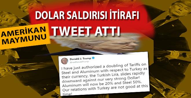 Trump, dolar saldırısını itiraf eden tweet attı!