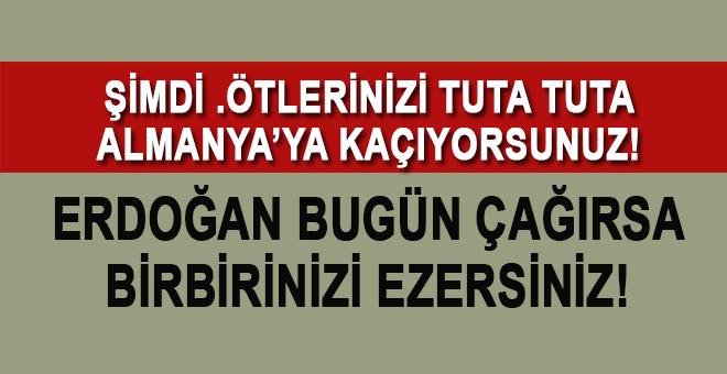 Erdoğan bugün çağırsa birbirinizi ezersiniz şimdi neye ağlıyorsunuz