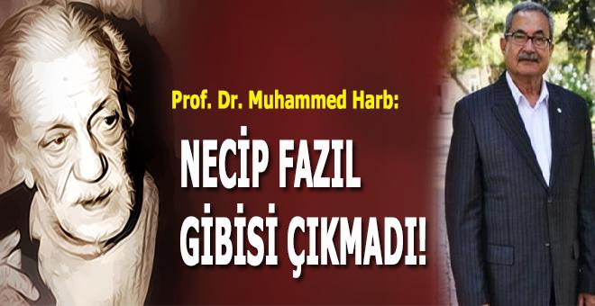 Prof. Dr. Muhammed Harb: İslâm düşünürleri arasında Necip Fazıl gibisi çıkmadı!