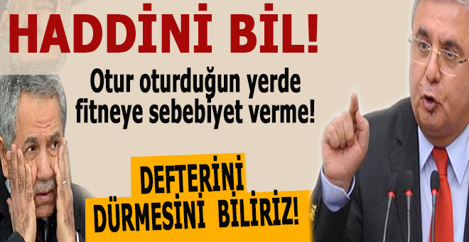 Mehmet Metiner'den Arınç'a; Haddini bil, otur oturduğun yerde, Reisin hatırına sana katlanıyoruz!