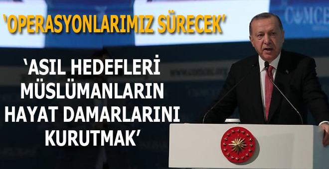 """Başkan Erdoğan: """"Asıl hedefleri Müslümanların hayat damarlarını kurutmak!"""""""