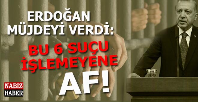 Erdoğan müjdeyi verdi; Bu 6 suçu işlemeyen af!