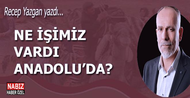 Recep Yazgan yazdı; Ne işimiz vardı Anadolu'da?