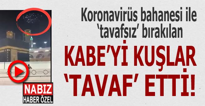 """Koronavirüs dolayısıyla """"tavaf""""ın yasaklandığı Kabe'yi kuşlar tavaf ediyor!"""