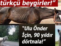 """""""Atatürkçü beygirler; """"Ulu önder için doksan yıldır dörtnala""""..."""