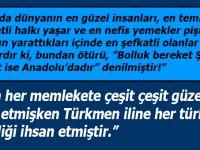 'Türkler, gaza ve cihat ehlidir. Cesaretleri dillere destandır'