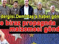 Alman dergisi propaganda için Demirtaş'tan malzeme istiyor!