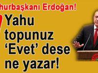"""Cumhurbaşkanı Erdoğan; """"Yahu topunuz 'evet' dese ne yazar!"""""""
