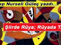 Zeynep Nurseli Güleç yazdı; Şiirde Rüya; Rüyada Tabir...