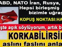 Türkler'den asıl şimdi korkabilirsiniz