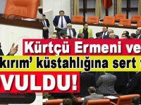 Mecliste küstahlık yapan Ermeni vekil, kovuldu!