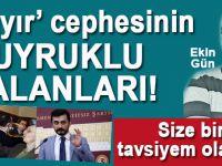 """Ekin Gün: """"Hayır"""" cephesinin kuyruklu yalanları..."""