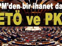 Bir ihanet daha; Türkiye'nin PKK ve FETÖ ile ilgili verdiği önergeyi reddettiler!