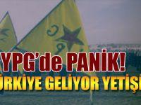 YPG'de panik; Tükiye geliyor!