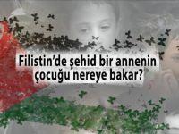 Bileniniz var mı; Filistin'de şehid düşen bir annenin çocuğu nereye bakar?