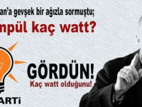 """Erdoğan'a gevşek bir ağızla sormuştu; """"Ampül kaç watt?"""""""