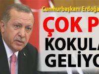 """Cumhurbaşkanı Erdoğan: """"ABD'den çok pis kokular geliyor!"""""""