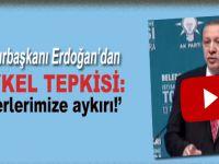 Cumhurbaşkanı Erdoğan'dan heykel tepkisi: Değerlerimize aykırı!