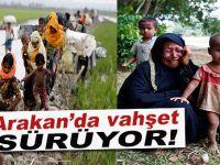 Arakan'da Müslümanlara yönelik insanlık zulmü devam ederken BM'den yeni bir açıklama geldi!