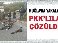 Muğla'da yakalanan PKK'lılar çözüldü!