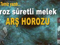 Osman Temiz yazdı; Horoz Sûretli Melek...