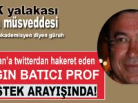 Cumhurbaşkanı Erdoğan'a twitterdan hakaret eden azgın Batıcı prof destek arayışında!