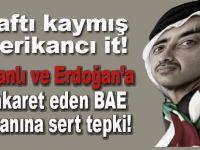 Türkiye'den terbiyesiz tweete sert tepki!