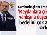 Cumhurbaşkanı Erdoğan: Meydanlara çıkma yanlışına düşenler bedelini çok ağır öder!