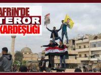 Afrin'de YPG ile terör kardeşliği: Apo ve Esad posterleri bir arada!