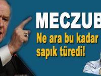 Bahçeli'den Nurettin Yıldız'a; Meczup!
