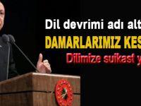 """Cumhurbaşkanı Erdoğan: """"Dil devrimi adı altında damarlarımız kesildi!"""""""
