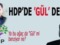 """HDP'de """"Gül"""" dedi... """"Abdullah Gül'e oy vermesi için ikna etmeye çalışacağız..."""""""