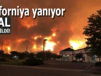 Kaliforniya'ya yanıyor; OHAL İlân edildi!