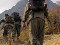 PKK'lı teröristlerin cenazelerini aileleri de kabul etmiyor