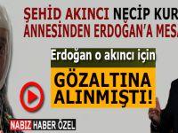 Şehid Akıncı Necip Kural'ın annesinden Cumhurbaşkanı Erdoğan'a mesaj var!