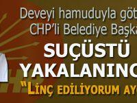 """CHP'li Belediye Başkanı deveyi hamuduyla götürürken suçüstü yakalanınca; """"Özür dilerim linç ediliyorum ayol!"""""""