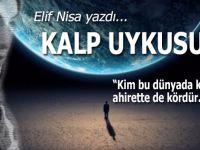 Elif Nisa yazdı; Kalp uykusu...