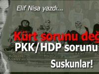 Elif Nisa yazdı; Kürt Sorunu Değil, PKK/HDP Sorunu!