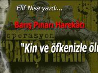 Elif Nisa yazdı; Barış Pınarı Harekatı