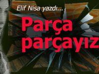 Elif Nisa yazdı; Parça parçayız!
