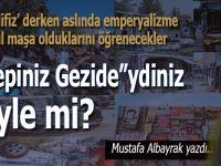 """Mustafa Albayrak yazdı; """"Hepimiz Gezide""""ydik öyle mi?"""