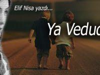 Elif Nisa yazdı; Ya Vedud...